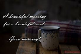 Beautiful Soul Quotes A Beautiful Morning for a Beautiful Soul New Quotes Status 30