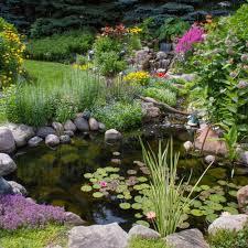 garden pond liners. Best Pond Liner Garden Liners H
