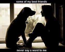 Quotes About A Girl And Her Dog Simple I Love My Dog Dogs Dogs Dogs Pinterest Dog Dog