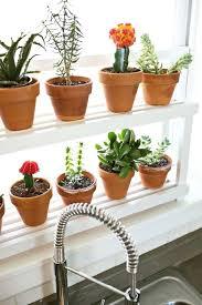 indoor window garden. indoor window plant shelves medium size of herb garden bay ideas kitchen .
