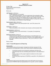 Word Project 006 Template Ideas Statement Of Work Word Project Management