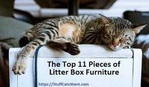 meow town mdf litter box. A Cat Sleeping On Top Of Bench Meow Town Mdf Litter Box I
