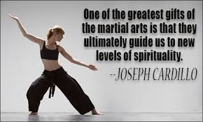 Martial Arts Quotes Magnificent Martial Arts Quotes II