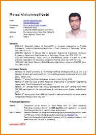How English Cv Example In English Resume Example Pdf Computer