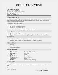 The Best Resume Format Amazing Excellent Resume Format New What Is The Best Resume Format