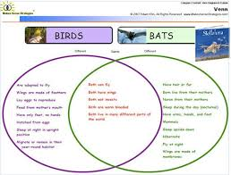 What Are The Various Parts Of The Venn Diagram Bird And Bat Venn Diagram Great Installation Of Wiring Diagram