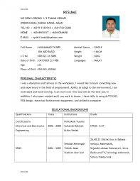 Example Of Good Resume Resumes Best Format Curriculum Vitae Pdf