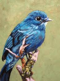 true blue 6 x 8 oil on board blue bird on