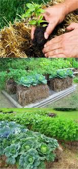 straw bale gardens complete book