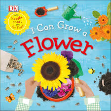 Sunflower Growing Chart I Can Grow A Flower Life Cycle Board Books Dk