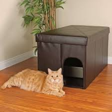 Hide the cat litter box in an ottoman! I thought this was a neat idea