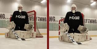 Image result for goalie dead arm