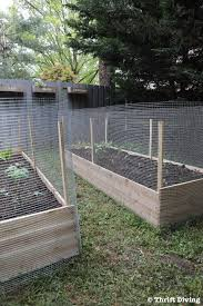 how to build a raised garden bed protected with a metal fence how much do