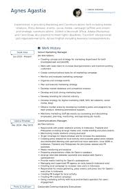 marketing manager resume expert resumes your nations 1 resume writing service telecom