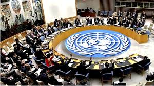 НҮБ-ын бие даасан шинжээч, илтгэгч нар Монгол Улсад ажилласан тайлангаа  танилцуулав – NewsWall