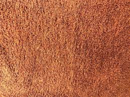 burnt orange rug area rugs small round grey next
