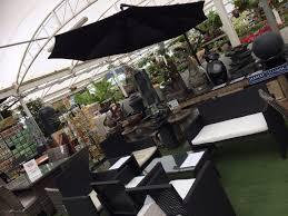 kemps plants a garden centre in westerleigh bristol