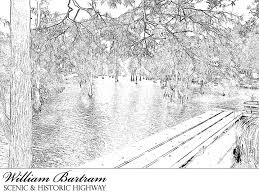 Small Picture William Bartram Scenic and Historic Highway Coloring Page