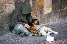 Panhandling with Pets: Why a Dog Will Make People Give More ...