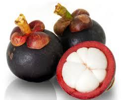obat kolesterol tradisional