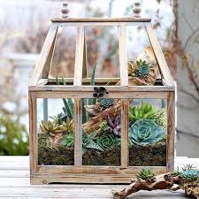 Small Picture Best 20 Indoor succulent garden ideas on Pinterest Indoor