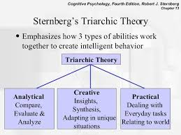 Sternberg Intelligence Sternbergs Triarchic Intelligence Cognitive Psychology