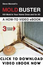 what to use to kill mold. Plain Mold Kill Mold Step6 Stop From Coming Back Inside What To Use K