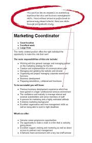 marketing objective resume