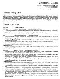 Sample Director Of Finance Resume 21 Free Financial Manager Resume Samples Sample Resumes