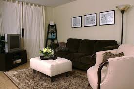 Living Room Cute Living Room Decorating Ideas On Living Room With 30  Magnificent Small Decorating Ideas Awesome Design