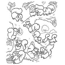 Small Picture Top 25 Free Printable Squirrel Coloring Pages Online