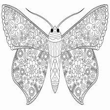 Kleurplaten Voor Volwassenen Vlinders Knap Vlinder Kleurplaten Beste