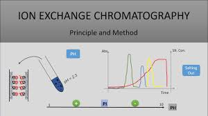 The Principle Of Ion Exchange Chromatography A Full Explanation