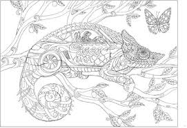 color me 2 is the second book in the bestselling color me your way series this whimsical coloring book filled again with nature based images