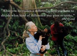 Jane Goodall Quotes Stunning Jane Goodall Quotes That Will Inspire You