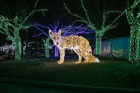 Wild Lights Detroit Zoo Tickets Detroit Zoo Celebrates Holidays With Wild Lights News