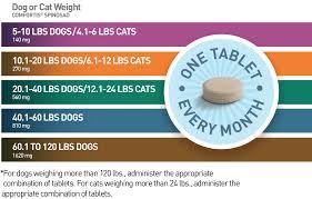comfortis dosing information comfortis for dogs91
