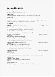 25 It Skills Resume Simple Best Resume Templates