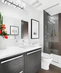 Bathrooms Design : Cool Small Bathroom Adorable Renovations ...