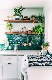 Decorating: Botanical Green Indoor Plants In The Kitchen - Indoor Gardens