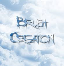 picture of adobe photo cs3 brush creation for dummies