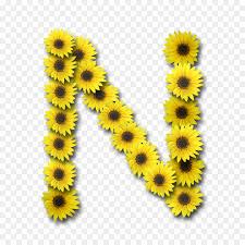 caso de la letra del alfabeto inicial carta n