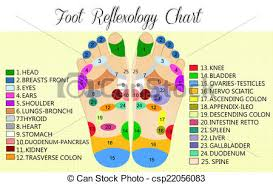 Reflexology Chart Foot Reflexology Chart