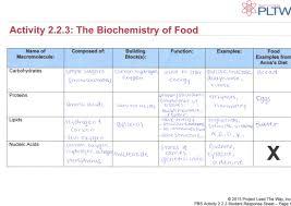 Macromolecules Chart Ap Biology Four Macromolecules Chart Images Large Table Saw