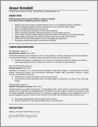 General Resume Objective Examples Mesmerizing Resume Career Objective Examples Plumber Inspirational General