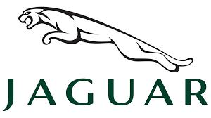 Jaguar Logo, HD Png, Meaning, Information | Carlogos.org