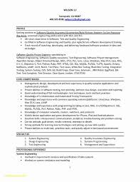 Software Developer Resume Examples Free Download Build And Release