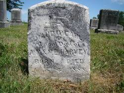 Maud Pearl Harvey (1888-1888) - Find A Grave Memorial