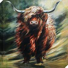 Hilary Barker - Seriously Bad Hair Day Canvas Print, 60 x 60cm | Highland  cow art, Cow art, Cow painting
