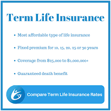 Fixed Term Life Insurance Quotes Interesting Quote For Life Insurance Policy Best 48 Term Life Insurance Quotes